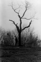 tree with man by RightBeforeTheDawn
