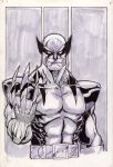 Old School Wolverine by Kid-Destructo