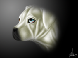 Portrait of Blue by Ayedeas