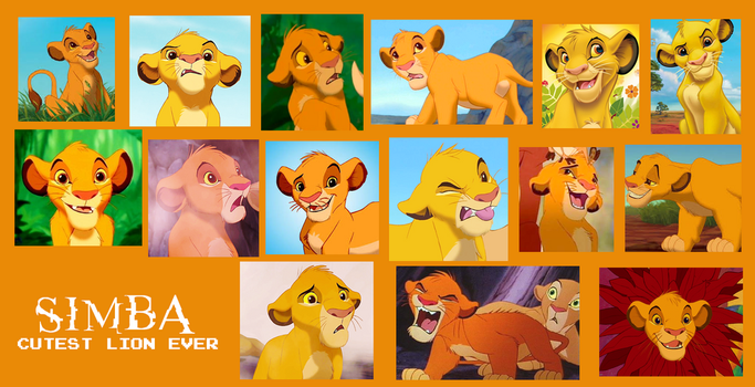 Simba from Lion King Collage by Scamp4553