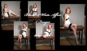 Black and White Affair 5 by kime-stock