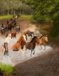 Study - Horses by Wolkenfels