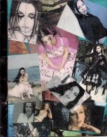 Amy Lee collage by Twili603