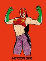 Mexican wrestler : Meteor Girl by lone-wolf-boudin