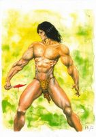Tarzan Pin-up by avix