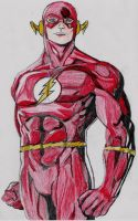 The Flash by lordtator