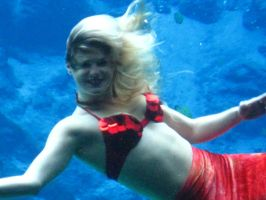 071 Weeki Wachee Springs by crazygardener