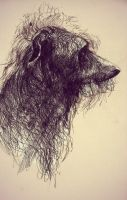 Deerhound by UgaraBorzoi