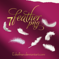 Feather png pack by Edailhan