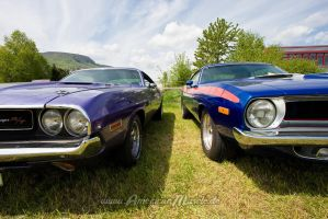 Challenger versus Barracuda by AmericanMuscle