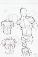 Male Anatomy Practices by nekoninja3001