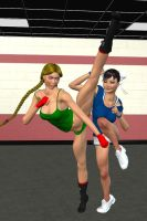 ChunLi and Cammy Spar in the Gym 3 by Chingafakes