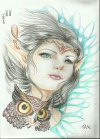 elf and  owl  fantasy by keper7