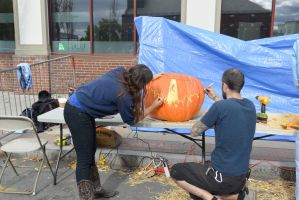 2014 Monster Bash, Pumpkin Carving 6 by Miss-Tbones