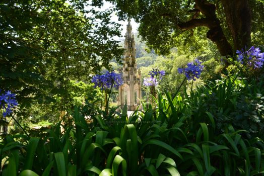 Agapanthus Spire by Sirenization