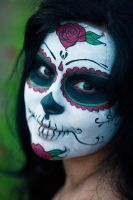 Day of the dead valentine 14 by DR0ck