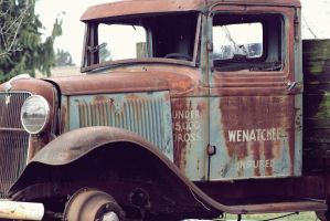 Old Ford Side View by FrancesColt