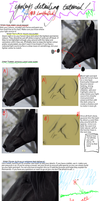 Equine Detailing Tutorial by LoveHasDied