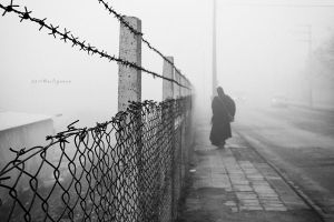 wire fence by pigarot