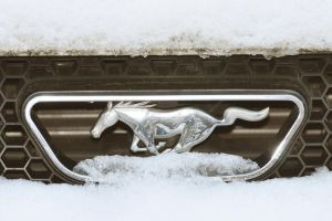 Snow on my Ford Mustang Grill by Tailgun2009