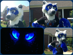Start raccoon partial by AlexInDistrict9