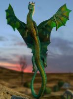 3D Dragon by Athey