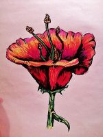 Sharpie Flower by Panicatthedisco7