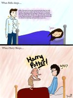 sleep Twilight v. Harry Potter by ttlywinket