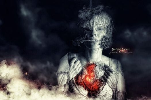 Burning Heart by peroni68
