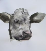 Cow Head 130407 by AEnigm4