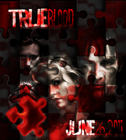 Puzzles Suck: True Blood 4 2.0 by FairyFindings