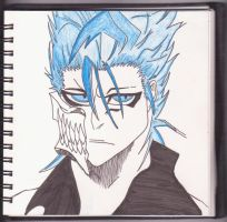 Grimmjow by Ray-Kanen