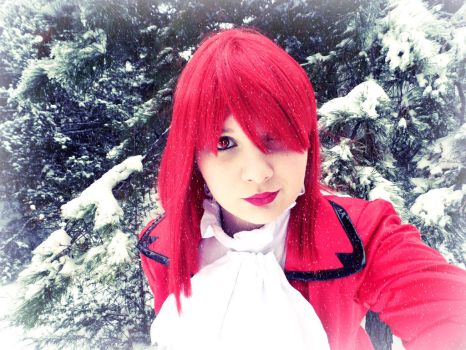 Red Amongst the Snow III by Breaking-Dawn998