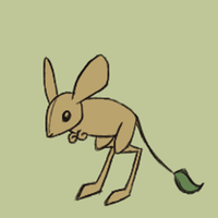 silly bouncy Jerboa animation by lizspit