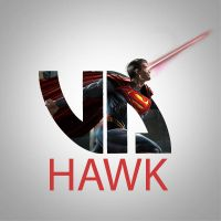 Hawk by ImHashtag