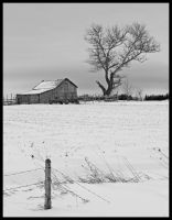 Winter Farm by Rebacan