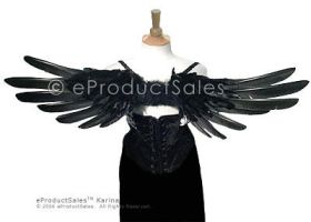 K A R I N A above Angel Wings by eProductSales