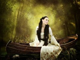 The Lady of Shalott by violscraper