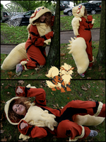 Commission: Arcanine Cosplay by kleinespika