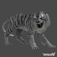 White Tiger by bloodyzarroc