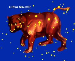 Constellation Ursa Major by VitaZheltyakov