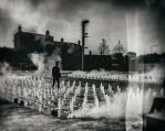 Fountains of youth by deepgrounduk