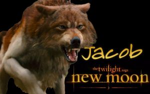New Moon Wallpaper - Jacob by michaelkuttler