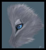Wolf eye by FuelFireDesire