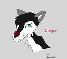 Guiga360 head shot by Amberstar911