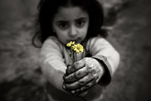 its for you my love by sultan-alghamdi