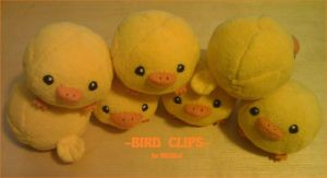 Bird Clips: 'CHIRP' by Midbot