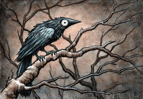 Black Bird Watercolour VI by shmeeden