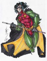 Robin by Hodges-Art