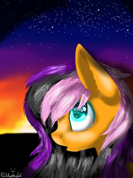 :Contest Entry 4/4: Looking at the Stars by NamiChee